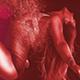 Rotlichtmagazin Bild
